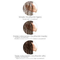 Sulfatadora Presión Previa Línea Verde 6 litros